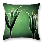 Spider Home Throw Pillow