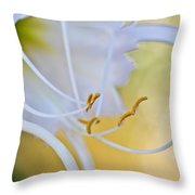 Spider Lily 2 Throw Pillow