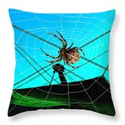 Spider On The Olympic Roof Throw Pillow