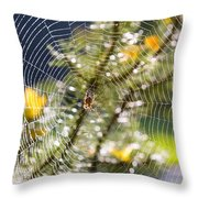 Spider On Web Throw Pillow
