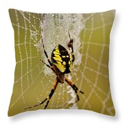 Spider Power Throw Pillow