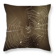 Spider Web 1.0 Throw Pillow