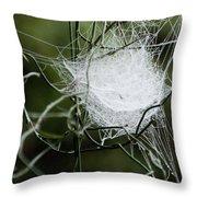 Spider Web Basket Throw Pillow