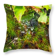 Spider Webs At The Farm Throw Pillow
