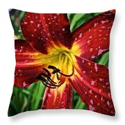 Spiderman The Day Lily Throw Pillow