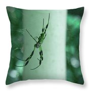 Spiders - Mr And Mrs Throw Pillow