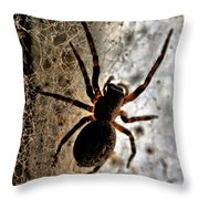 Spiders Home Throw Pillow