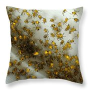 Spiders Spiders Spiders Throw Pillow