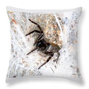 Spiders Trap Throw Pillow
