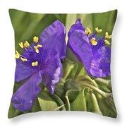 Spiderwort 2273 Throw Pillow