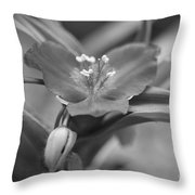Spiderwort In Black Throw Pillow