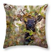 Spike Elk In Brush Throw Pillow