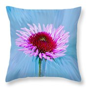 Spin Me Throw Pillow