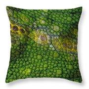 Spiny Desert Rhinoceros Chameleon Throw Pillow