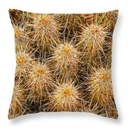 Spiny Prickly Sharp Throw Pillow