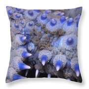 Spiny Starfish Marthasterias Glacialis Throw Pillow
