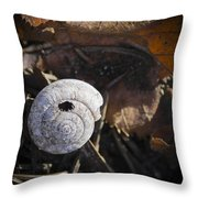 Spiral Shell Game Throw Pillow