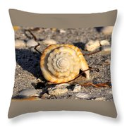 Spirals From The Sea Throw Pillow
