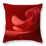 Spiral's Heart Throw Pillow