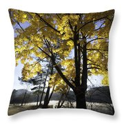 Spirit By The Lake Throw Pillow