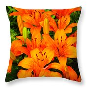 Spiritual Bouquets At St. Francis Cathedral Throw Pillow