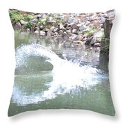 Splashdown Throw Pillow
