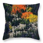 Splashes Of Fall Throw Pillow
