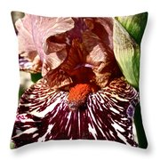 Splattered Iris Throw Pillow
