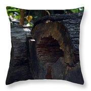 Split A Piece Of Wood Throw Pillow