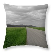 Split Line Throw Pillow by Roderick Bley