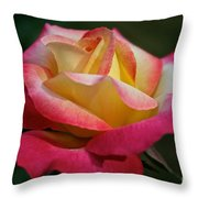 Spoken Softly Throw Pillow