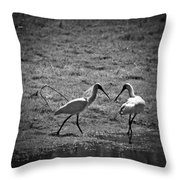 Spoonbills Throw Pillow