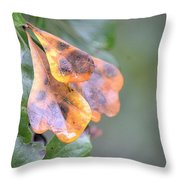 Spotted Oak Leaves In Autumn Throw Pillow