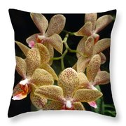 Spotted Orchids Throw Pillow