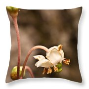 Spotted Wintergreen 1 Throw Pillow