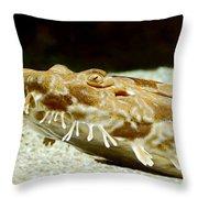 Spotted Wobbegong Shark Throw Pillow