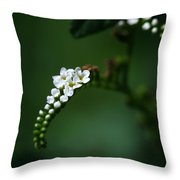 Spray Of White Flowers Throw Pillow