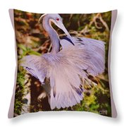 Spread Out Throw Pillow