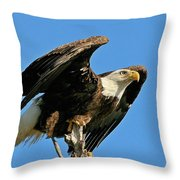 Spread Wings Throw Pillow