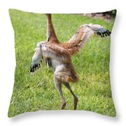 Spread Your Wings And Try To Fly Throw Pillow