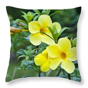Spreading Petals On Tall Stemmed Bright Throw Pillow