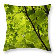 Spring - Beneath The Great Maple Throw Pillow