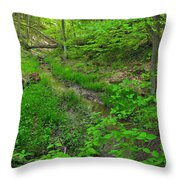 Spring At Cleveland Metro Park Throw Pillow