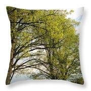 Spring Awaits Throw Pillow