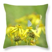 Spring Azure And Friend Throw Pillow