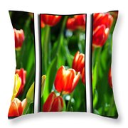 Spring Beauty Triptych Series Throw Pillow