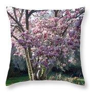 Spring Blooming Throw Pillow