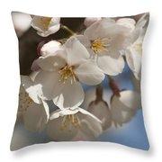 Spring Blooming Yoshino Cherry Tree Throw Pillow