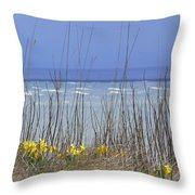 Spring Comes To The Cape Throw Pillow
