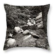Spring Creek II Throw Pillow